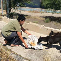 Animal Kindness Beyond Borders