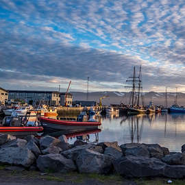 The Whales of Husavik, Iceland