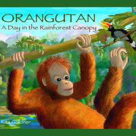 Review of Orangutan: A Day in the Rainforest Canopy